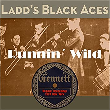 Runnin´ Wild (Original Recordings New York 1923)