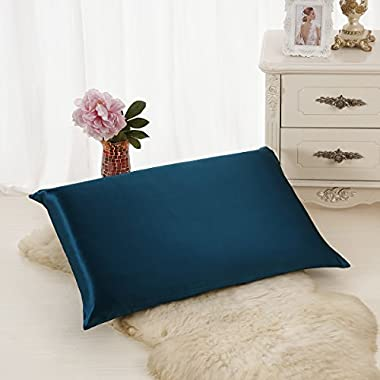 ALASKA BEAR Natural Silk Pillowcase, Hypoallergenic, 19 momme, 600 thread count 100 percent Mulberry Silk, Standard Size with hidden zipper(1, Teal)