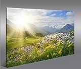 islandburner Bild Bilder auf Leinwand Bergwiese V2 Alpen