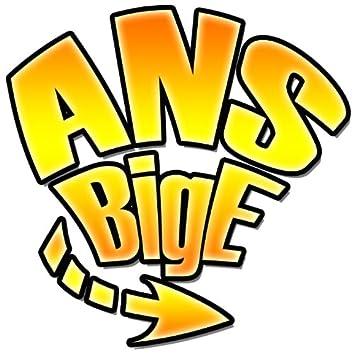 A.N.S