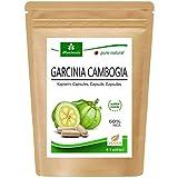 Garcinia Cambogia 90 cpsulas vegetarianas (4:1 extracto, 60% HCA) polvo de fruta...