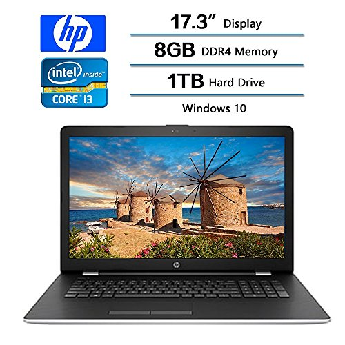 "2017 HP 17.3"" Business Flagship Laptop PC HD+ WLED-backlit Display Intel i3-7100U Processor 8GB DDR4 RAM 1TB HDD Intel 520 Graphics DVD-RW 802.11AC Wifi Webcam HDMI Windows 10-Silver"
