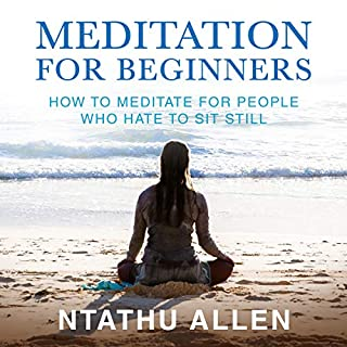 Meditation for Beginners: How to Meditate for People Who Hate to Sit Still audiobook cover art