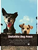 Invisible Dog Fence: Best Invisible Dog Fence Top 7 Products on thе Market (English Edition)