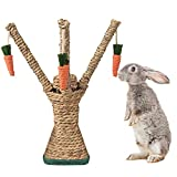 Bunny Chew Toys, RabbitScratching Climbing Fun Tree with Carrot Shaped Toy, Handwoven Seagrass Chew Toy for Rabbits, Cats, Hamsters, Gerbils Teeth Grinding