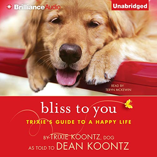 Bliss to You cover art