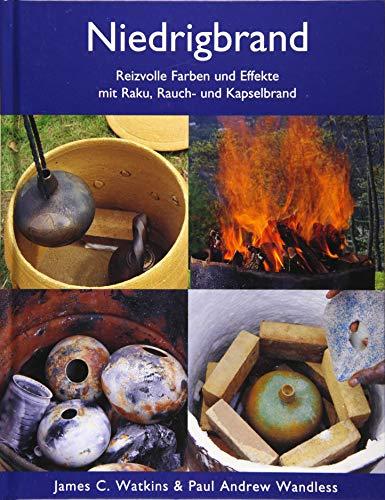 Niedrigbrand: Reizvolle Farben und Effekte mit Raku, Rauch- und Kapselbrand