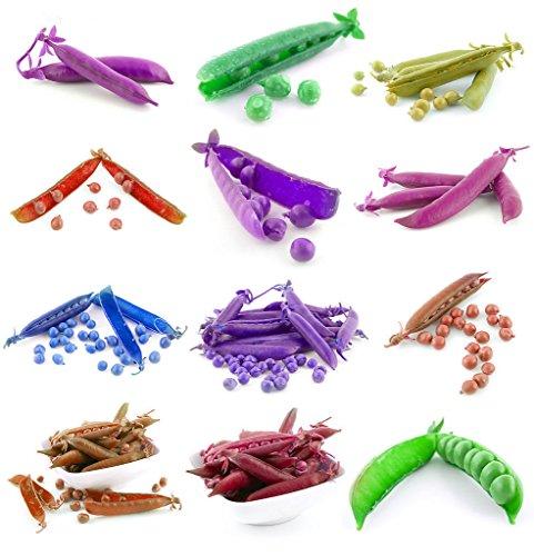 fruits et légumes semences ornementales, club de gourde Rod fruit graines de courge, la floraison à maturité 80 jours, 10 particules de graines / sac