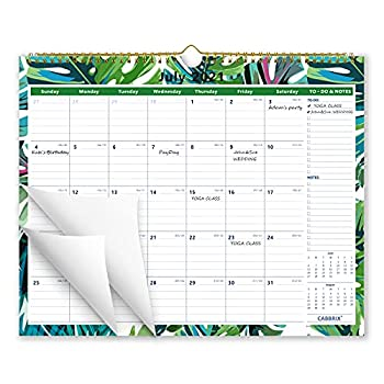 Cabbrix 2021-2022 Academic Year Monthly Wall Calendar Ruled Blocks 15 x 12 Inches Family Schedule Calendar for School Office & Home Planning