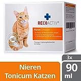 RECOACTIV Nieren Tonicum für Katzen - Kurpackung 3x90 ml