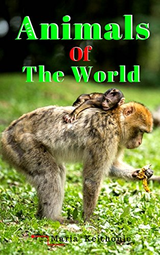 Animal of the world , Animal picture books , Cute animals , Dangerous animals book: animal of the world pictures all animals photo