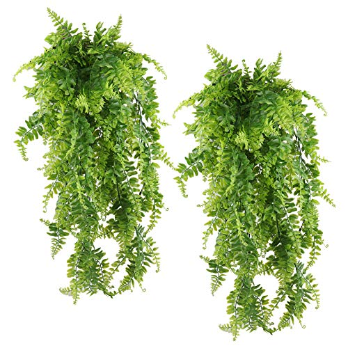 PUBAMALL Plantas Artificiales Boston Ferns Colgantes de vides Falsas, para Pared Cestas Colgantes de Interior Decoración de guirnaldas...