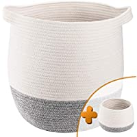 2-Pack TerriTrophy Large Woven Storage Basket