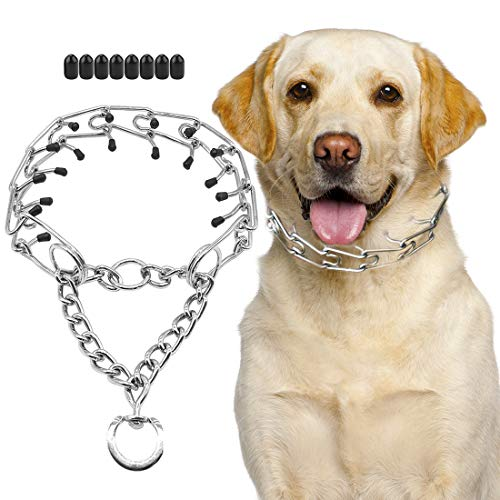SuReady Dog Prong Collar, Stainless Steel Dog Chole Pinch Training Collar with...