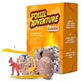 ALLESSIMO Fossil Adventure - Ancient Dino Egg Fossil Dig Kit, Complete Archeology Excavation Toy for Kids, Hatch Your Own Dinosaur Egg, Educational and Fun Learning Adventure for Boys and Girls