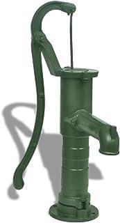 vidaXL Bomba de Agua de Mano de Hierro Fundido para Jardín