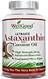 Natural Astaxanthin 30mg with Coconut Oil - Vegan 90 Capsules - Highest Strength - Natures Most Potent Antioxidant! - Vegan/Vegetarian Friendly - by WellGood - **SPECIAL LAUNCH PRICE ONE DAY ONLY! from WellGood
