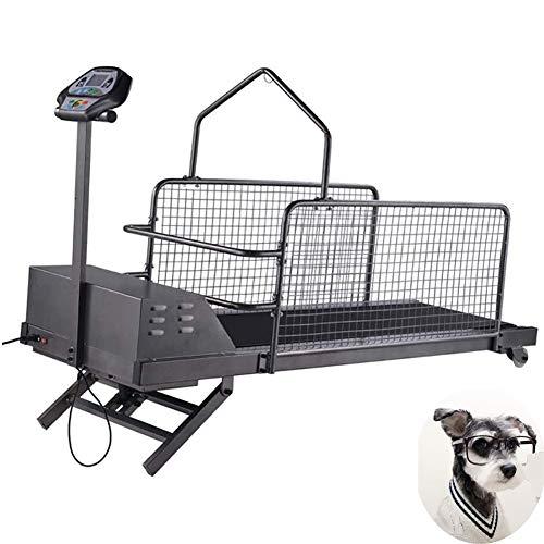 AMhuui Cane Treadmill, Tapis Roulant al Coperto Esercizio Fitness Pet Tapis Roulant Esercizio al Coperto per I Cani Fino a 200 Libbre, Kit Fitness