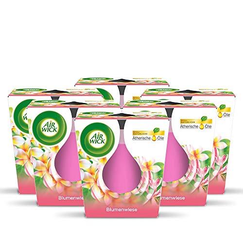 Air Wick Candela profumata in barattolo di vetro – Profumo: prato floreale – Contiene oli essenziali naturali – 6 candele profumate rosa