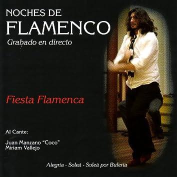 Noches de Flamenco - Fiesta Flamenca