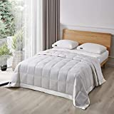 Serta White Goose Feather and White Goose Down Fiber Natural Fill Blanket, Full/Queen