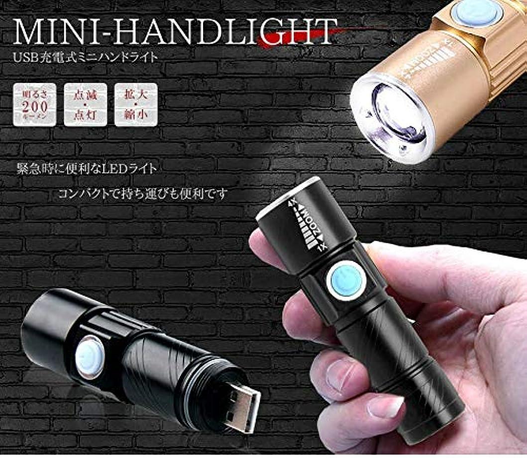 申請中配る件名USB充電式 小型 LED ハンドライト 懐中電灯 アウトドア 電池不要 TASTE-BLH015D ゴールド