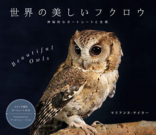 世界の美しいフクロウ 神秘的なポートレートと生態