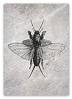蛾、錫サインヴィンテージ面白い生き物鉄の金属板の塗装パーソナリティノベルティ