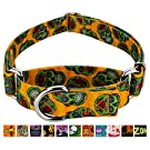 Country Brook Design - Martingale Dog Collar - Halloween Collection with 11 Spooky Designs