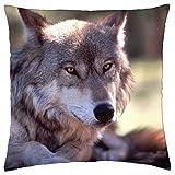iRocket Funda de cojín de lobo gris (24' x 24')