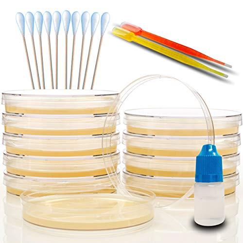 Evviva Sciences Amazing Bacteria Science Kit
