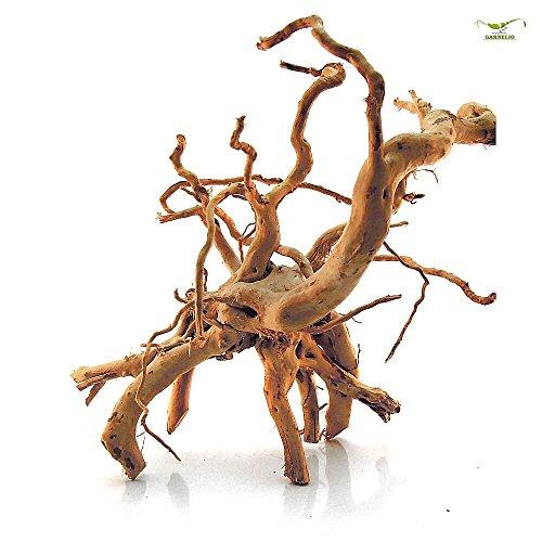 Stoffels Racine Araignée Bois d'Ornement Décoration pour Aquariophilie 30-40 cm Taille Moyenne