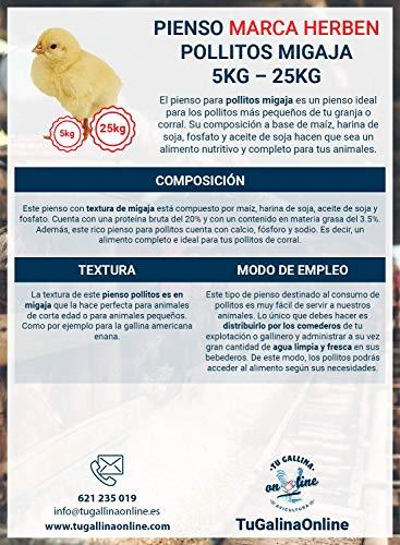 Pienso Pollitos Migaja, Saco de 5Kg | Pienso de 1º Calidad, Rico en Nutrientes y Propiedades