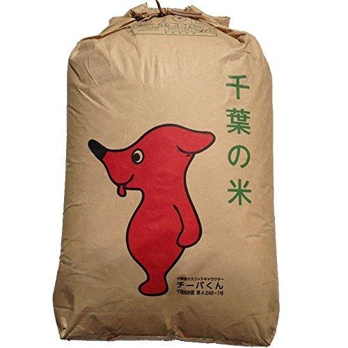 令和1年産 玄米 ミルキークイーン 20kg 千葉県産 (玄米20キロ)