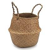 IVAILEX Seegras Korb blumentopf Pflanzer, Gewebter Aufbewahrungskorb, Natürlich Wäschekorb mit Griffen, 22cm D x 23cm H