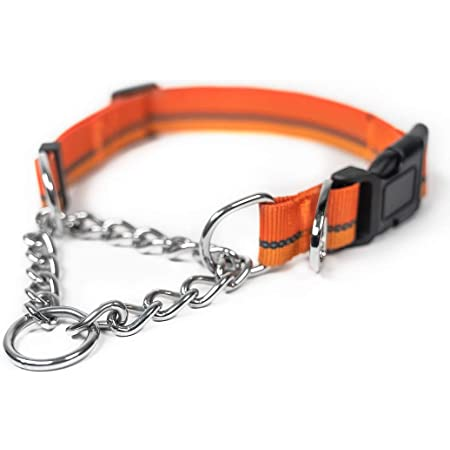 Mighty Paw Martingale Dog Collar 2.0 | Trainer Approved Limited Slip Collar with Stainless Steel Chain & Heavy Duty Buckle. Modified Cinch Collar for Gentle & Effective Pet Training