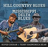 From Hill Country Blues To Mississippi Delta Blues