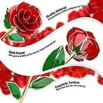 suturun-gold-dipped-rose24k-gold-rose-with-transparent-standreal-long-stem-eternity-rose-flower-best-for-hermomwifegirlfriendanniversarymothers-daybirthdayvalentineswedding