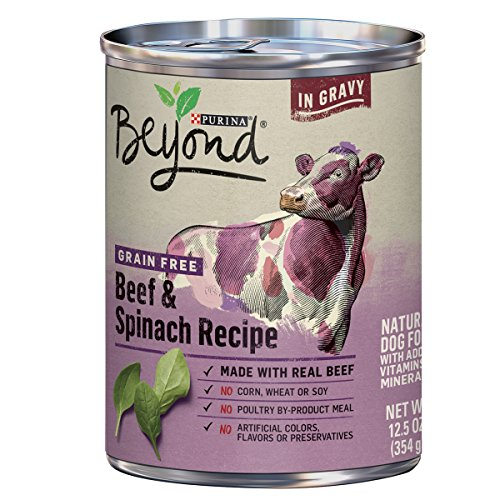 Price comparison product image Purina Beyond Grain Free,  Natural Gravy Wet Dog Food,  Grain Free Beef & Spinach Recipe - (12) 12.5 oz. Cans