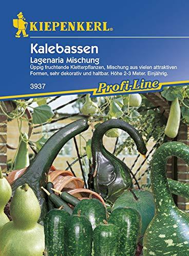 Kalebassen Lagenaria Mischung von Kiepenkerl [MHD 01/2018]