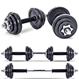 Lions 20kg Cast Iron Dumbbell Set Gym Free Weights Biceps Gym Workout Training Fitness (20kg Set)
