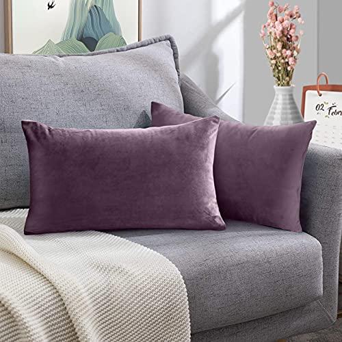 FORTRY Juego de 2 fundas de cojín de terciopelo suave y sólido, decorativas, cuadradas, para sofá, dormitorio, cojín lumbar, 30 x 50 cm, color morado