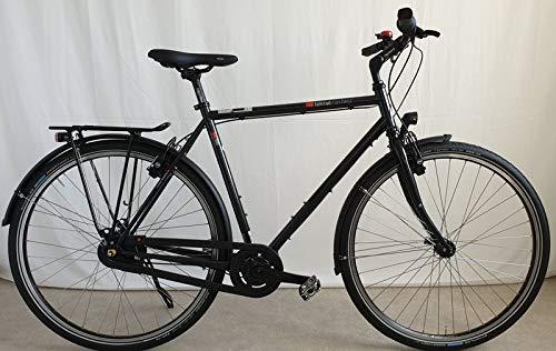 vsf fahrradmanufaktur T-300 Shimano Nexus 8-Gang HS22 Trekking Bike 2020 (28