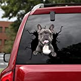 Ocean Gift French Bulldog Car Decals, Dog Car Stickers Pack of 2 - Realistic Frenchie Stickers for Car Windows, Walls Series 68 Size 8