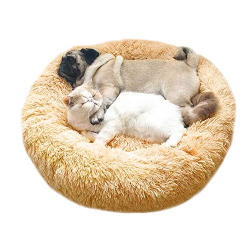 Wuudi Haustierbett, Hundebett Katzenbett Doughnut-Form Katzenhaus, Waschbar Rundes Plüsch Hundekissen Katzenbett Creme Farben 60cm