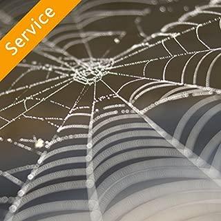 Best pest control service pros Reviews