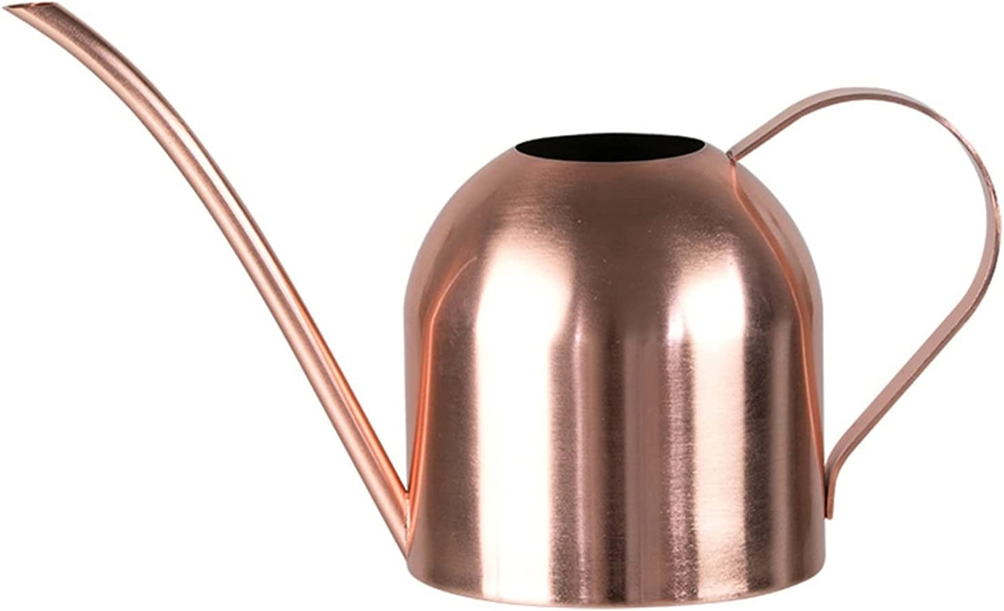 WYDMBH Watering can 500ml Stainless Golden sale Max 77% OFF Steel Retro