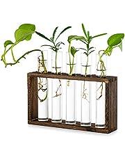 Glas planterare förökningsstation modern test tub blomma knopp vas i träställ ställ ställ bord terrarium för hydroponiska växter sticklingar kontor heminredning, gåva för växtälskare