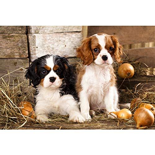 Paar Hond legpuzzels, 500/1000/2000/5000 Pieces houten puzzel Cadeaus voor Stellen, Volwassenen, Kinderen,500PCS