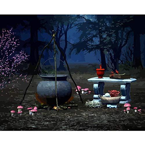Jcpaint DIY schilderen op cijfers voor volwassenen, kinderen, heks, doek, olieverfschilderij, met borstels en kleuren, acryl, zonder lijst, 40 x 50 cm